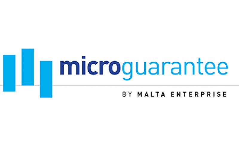 Micro Guarantee Scheme